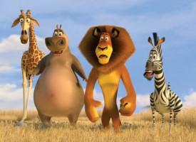 Szene aus 'Madagascar 2'