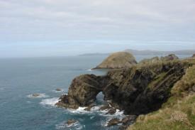 Steilküste kurz vor Abercastle