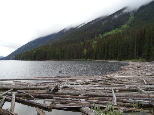 Duffey Lake
