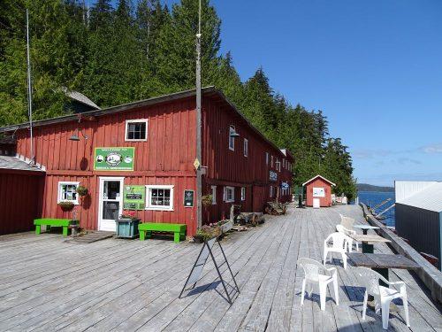 Whale-Watching-Büro